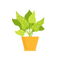 cute plant in yellow pot vector image vector image