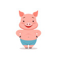 cute smiling pig funny cartoon animal vector image