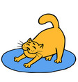 drowsy cute orange cat does morning exercises on vector image vector image