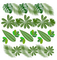 horizontal patterns leaves of tropical plants vector image