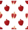 Red pomegranate seamless background vector image