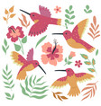 set hummingbird birds and flowers isolated vector image vector image