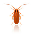 flat geometric cockroach vector image vector image
