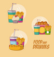 foods and drinks vector image