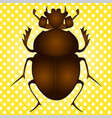 pop art egyptian scarab beetle brown vector image