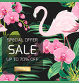 sale banner orchid flowers jungle leaves flamingo vector image vector image