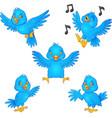 cartoon blue bird collection set vector image vector image
