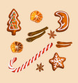 christmas gingerbread cookies and spices isolated vector image