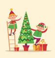 elves preparing christmas pine evergreen tree for vector image