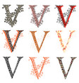various combination fishnet letter v vector image