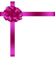 bow with ribbon 4 vector image
