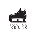 concept of social ice rink vector image