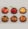 fruit berries and nuts realistic chocolate vector image vector image
