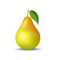 realistic detailed 3d whole pear isolated on a vector image vector image