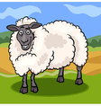 sheep farm animal cartoon vector image