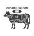 cow butcher diagram vector image vector image