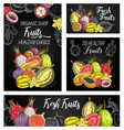 exotic fruits posters sketch food banner vector image vector image