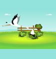 stork delivering bain cabbage vector image