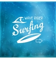 Surfing label on meshes background with stains vector image vector image