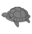 turtle icon monochrome vector image