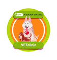 vet clinic icon with group of happy dogs isolated vector image