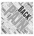 Back Pain Interventions Word Cloud Concept vector image vector image