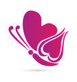 butterfly pink heart symbol vector image vector image