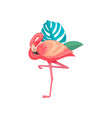 flamingo with leaves of tropical plants beautiful vector image