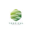 palm leaf logo design templateluxury elegant palm vector image vector image