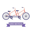 vintage tandem bicycle icon vector image vector image