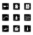 Waste icons set grunge style vector image vector image