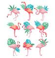 flat set of beautiful flamingos with green vector image vector image
