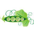 Green peas cartoon vector image vector image