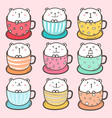 set of cute bear in the cup vector image vector image
