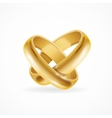 Shiny Wedding Gold Rings vector image