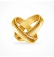 Shiny Wedding Gold Rings vector image