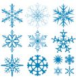 snowflakes collection vector image vector image
