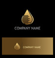 droplet gold technology logo vector image