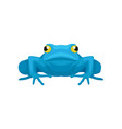 flat icon of funny frog front view vector image vector image