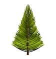 tree pine forest icon vector image