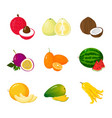 tropical exotic fruits set cartoon icons vector image