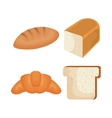 delicious bread isolated icon vector image