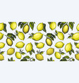 lemon seamless pattern hand drawn fruit vector image vector image