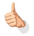 realistic thumbs up icon graphic vector image