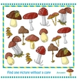 with color mushrooms vector image vector image
