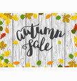 wooden autumn border leaf background vector image vector image