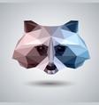 abstract polygonal tirangle animal raccoon vector image vector image