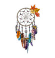 hand drawn ornate dreamcatcher with feathers and vector image vector image