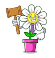 judge daisy flower mascot cartoon vector image vector image
