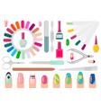 manicure service equipment and decorated nails vector image vector image